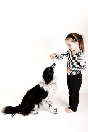 treats: giovane ragazza ricompense border collie cane