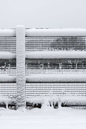 Snow covered fence rail