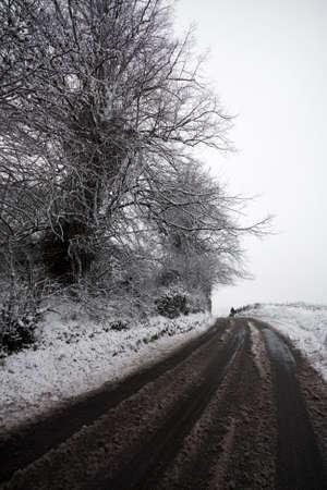 Snow tracks along a country lane photo