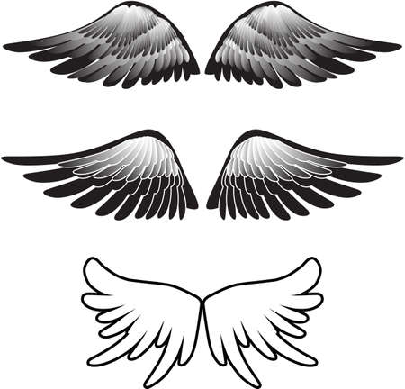 tattoo wings silhouette Stock Vector - 7116010