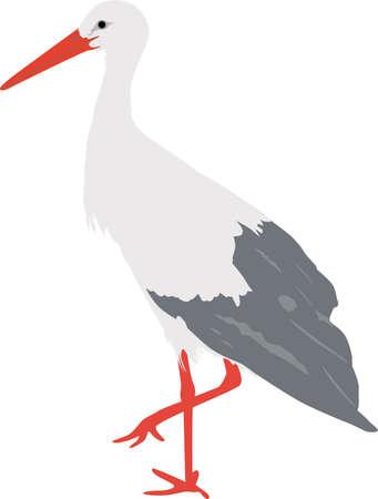 stork vector 矢量图像
