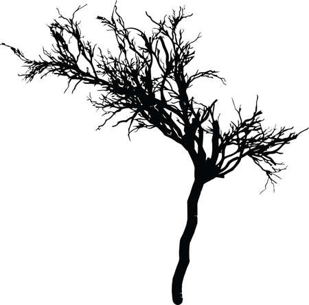cherry wood: tree silhouette vector