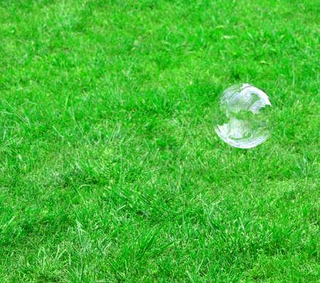 soap bubble and grass photo