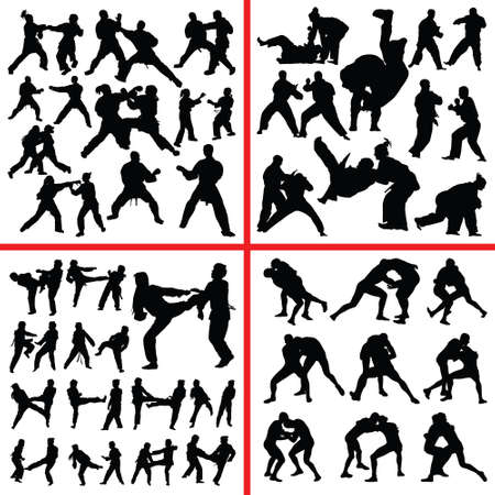 martial art mix