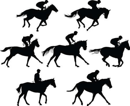 horse riding school. horse and jockey