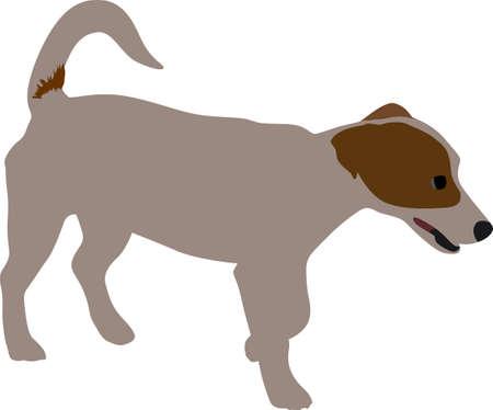small dog color vector take a pose