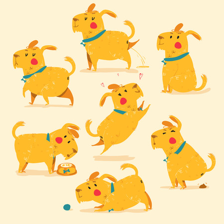 Different positions of dog , yellow.