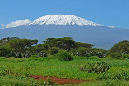 tanzania: Landscape with snow covered peak of Kilimanjaro in Kenya