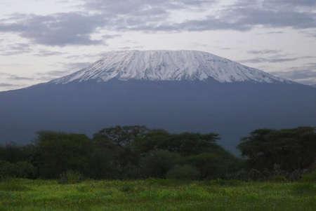 kilimanjaro: Mount Kilimanjaro in Kenya, landscape with snow covered peak in evening dusk