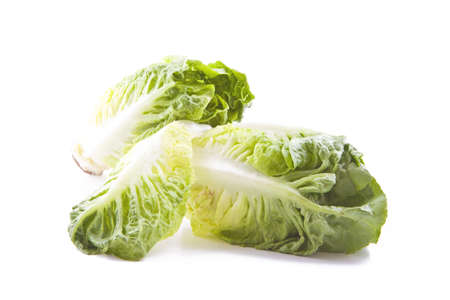 lettuces: Fresh green leafs of lettuces isolated on white Stock Photo