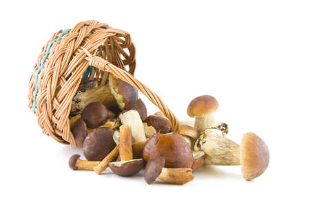 Boletus mushrooms with a wicker basket isolated on white background