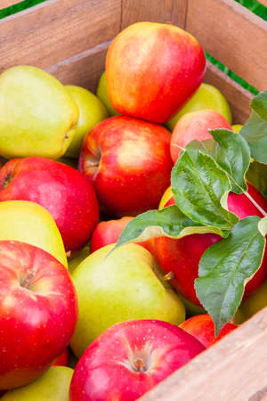 Green and red apples in a wooden box, fresh fruits