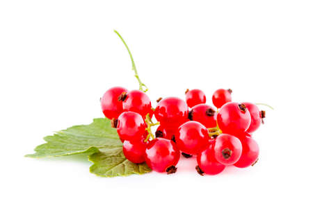 Red currants isolated on white, bunch of fresh fruits Imagens - 90825008