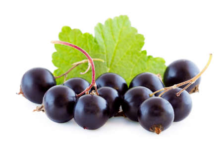 Black currants isolated on white, bunch of fresh fruits Imagens
