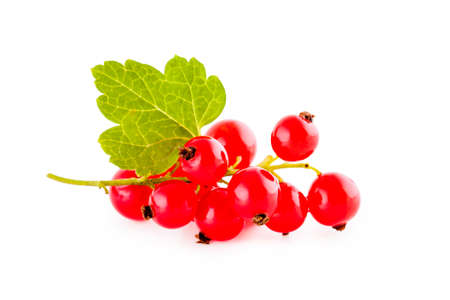 Red currants isolated on white, bunch of fresh fruits