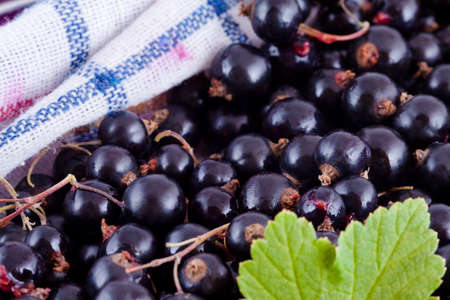 Black currants fruits with green leaf and white tablecloth