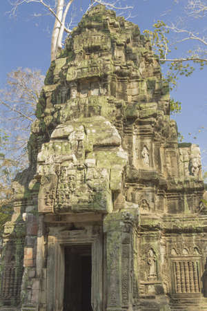 croft: The temple of Ta Prohm. He has gained popularity due to the fact that its territory filmed scenes from film Lara Croft Stock Photo