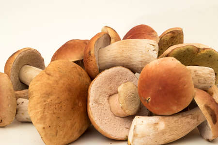 foot fungus: A pile of white mushrooms isolated on white background Stock Photo