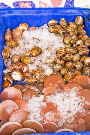alimentos y bebidas: Comida ex�tica, las bebidas y mariscos sudeste asi�tico.