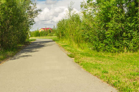 jogging track: Equipped paved jogging track in the forest park Stock Photo
