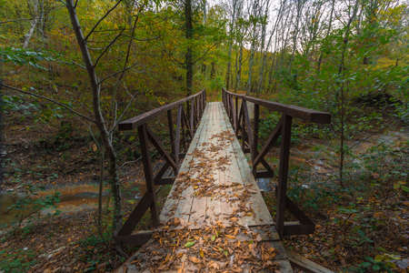 wooden railings: Wooden bridge over a ravine with wooden railings in the autumn forest