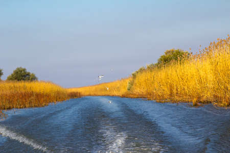 inflow: Natural landscape of the Volga river inflow Stock Photo