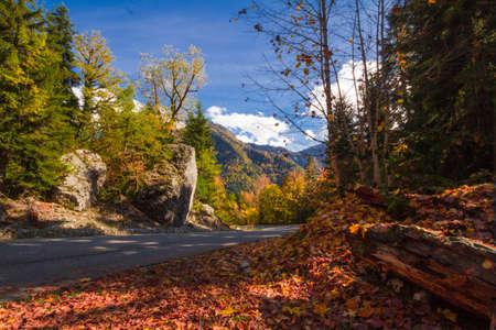abkhazia: Travel Republic of Abkhazia Autumn sketches and natural scenery.