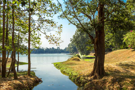 natural vegetation: Natural scenery, vegetation and trees on the grounds of the temple Complex Stock Photo
