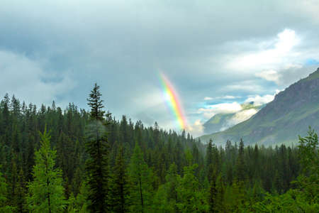 altai mountains: Colorful rainbow early summer morning in the Altai Mountains Stock Photo