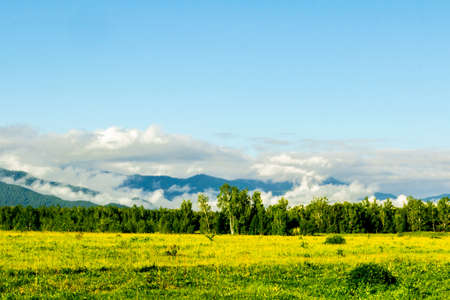 altai mountains: Early foggy summer morning in the Altai Mountains Stock Photo