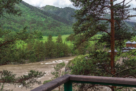 altai mountains: Muddy mountain river from melting snow flowing from the glacier peaks of the Altai Mountains