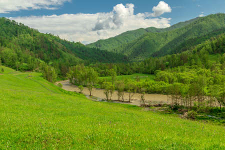 altay: River landscape on a background of the Altay mountains