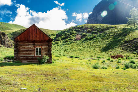 Detached wooden structure at the foot of the Altai Mountains in the Valley