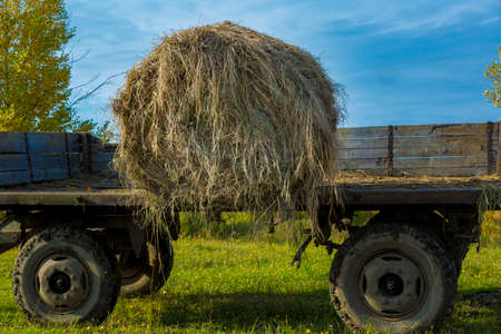 Bale of hay on an open-sided cart on a sloping meadow