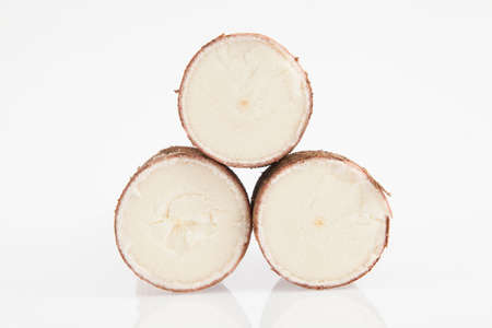 Cassava - Manihot esculenta; photo on white background