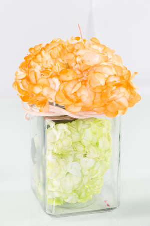 Hydrangea (hydrangeas); Arrangement of beautiful and colorful hydrangeas.