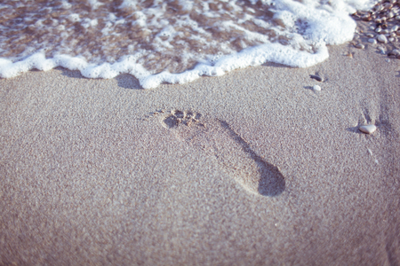 Feet of a young woman on the beach, near the water Stock Photo