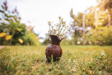 Shallow depth of field image with white wild flowers in a broken clay pot laid on the grass