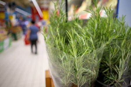Shallow depth of field image with rosemary herb on the fruits and vegetables aisle in a store