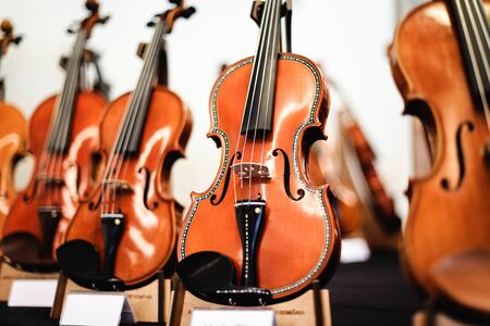 Details mit Teilen von Geigen vor einem symphonischen klassischen Konzert