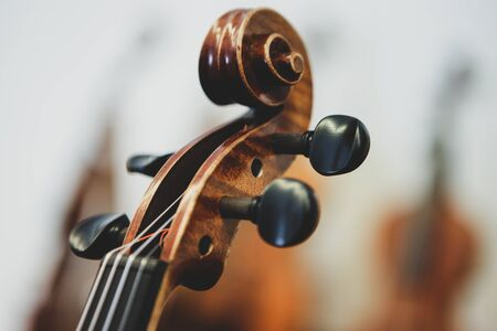 Details with the scroll, peg box, tuning pegs, strings, neck and fingerboard of a violin before a symphonic classical concert Reklamní fotografie