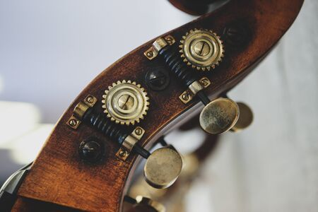 Details with the scroll, peg box, nuts, machine heads, tuning keys and tuners (the headstock) of a double bass