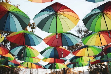 Rainbow colored umbrellas hang in a public park