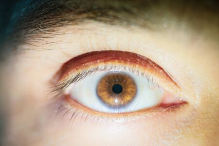 Macro image with the brown eye of a man
