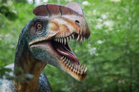 Rasnov, Romania - October 3, 2020: Details with a Dilophosaurus dinosaur model at an outdoors dino park in Romania.