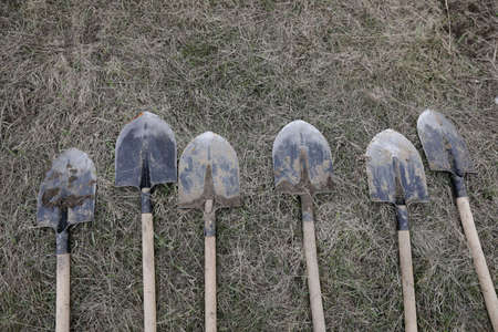 Shallow depth of field (selective focus) details of dirty shovels during a tree plantation.