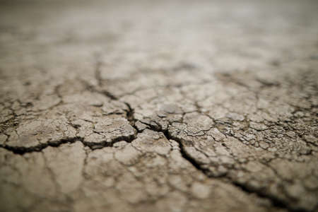 Shallow depth of field (selective focus) details with scorched earth under the strong sun of a summer day - drought.