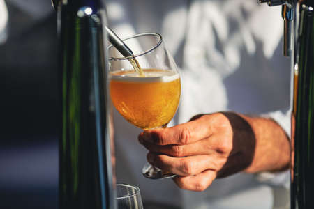 Shallow depth of field (selective focus) image with a man pouring craft beer from a dispenser into a glass.