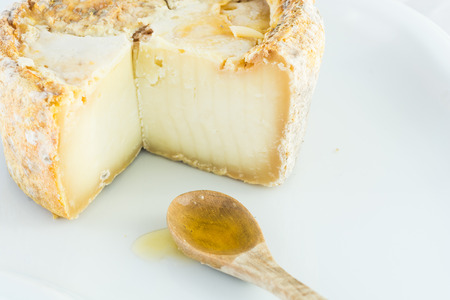 penicillium: The form of hard cheese honey of a bloomy rind goats milk, frost crust, treatment through special mold of the genus Penicillium, such as Penicillium camemberti. Typical soft texture and whitish color. Made with goats milk is used camemberti as penicilli