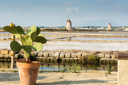 Abstract and conceptual of salt pans of Trapani and Mozia with windmill. the ancient salt extraction activity, is a wetland that offers shelter to numerous species of migratory birds. 写真素材